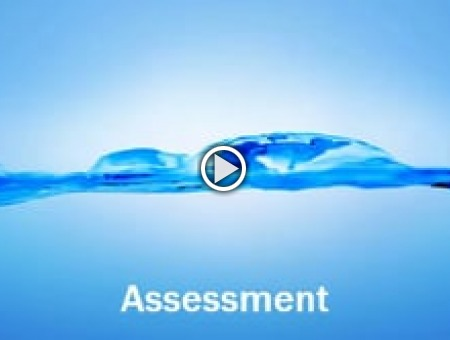 Assessment & Specification