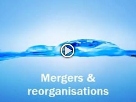 Mergers & Reorganisations